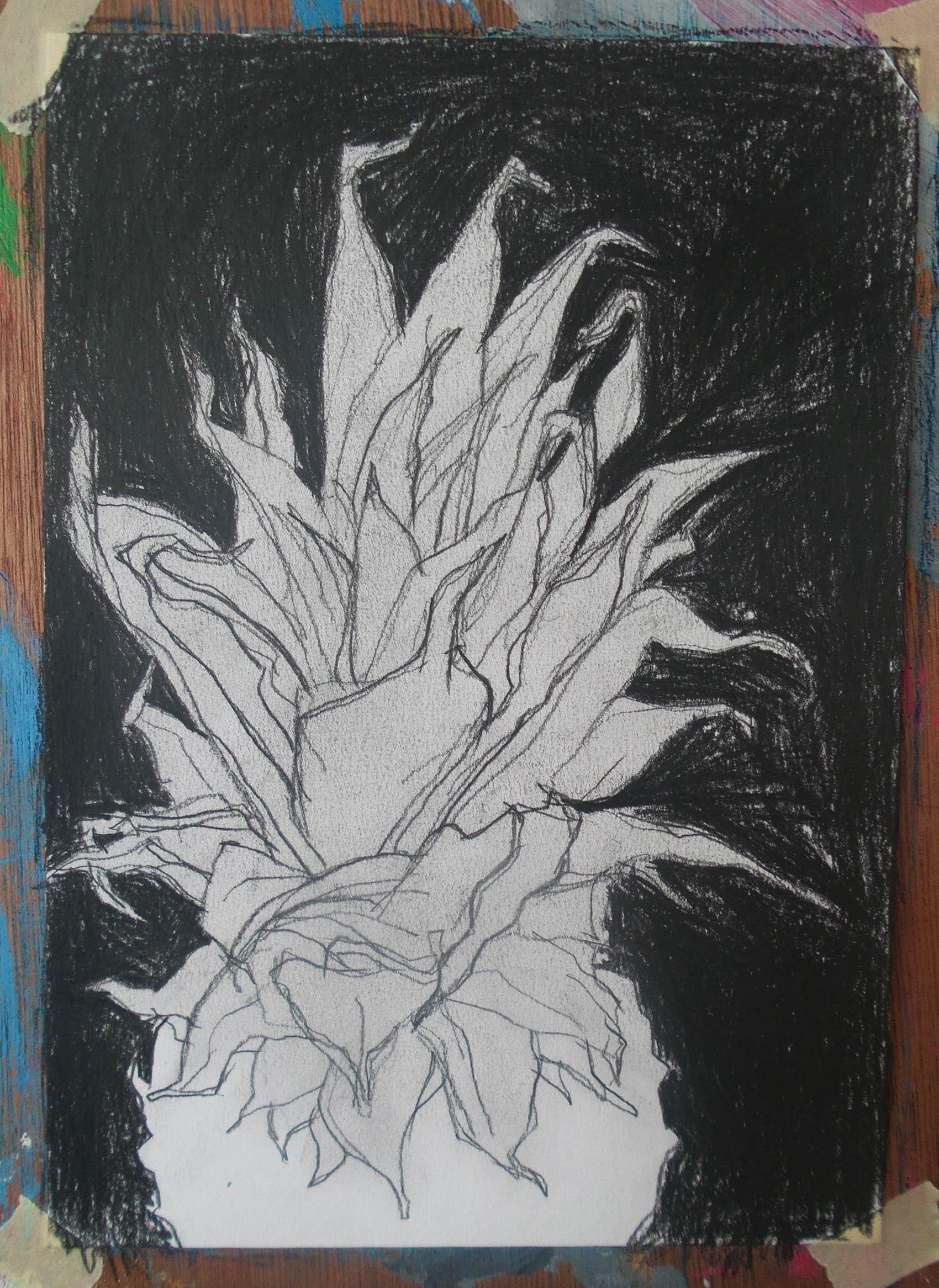 zwart-wit tekening ananas in zwart black and white drawing pineapple