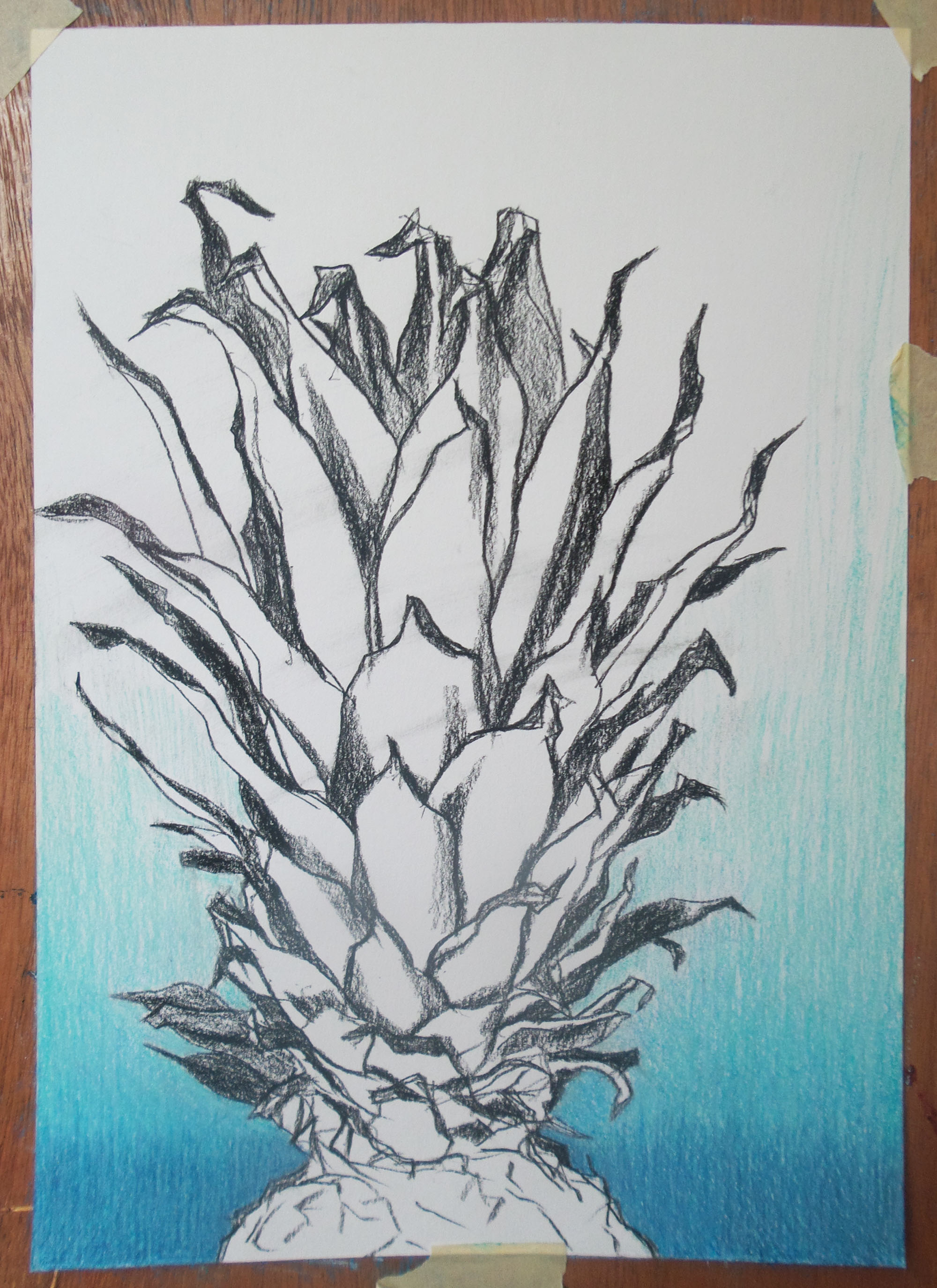 tekening ananas blue ananas colourpencil drawing of a pineapple
