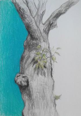blue tree, boom tekening