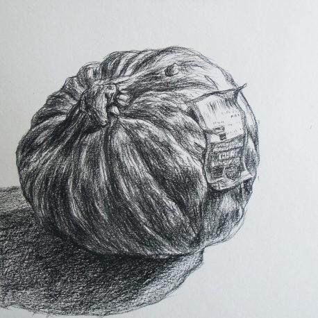 pompoen tekening van een biologische pompoen black and white drawing pumpkin