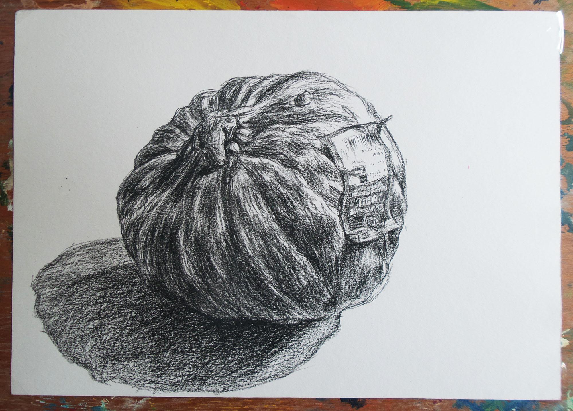 zwart-wit tekening van een biologische pompoen black and white drawing pumpkin