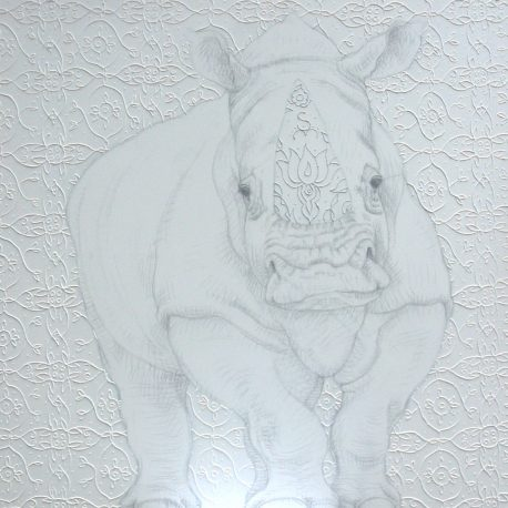 white rhino, 100 x 100 cm, tekening neushoorn op doek,